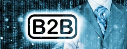 b2b biz guy secondary