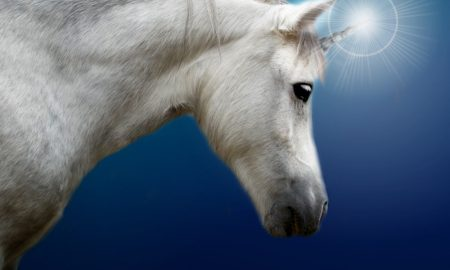 Unicorns Flutter into 2016's end