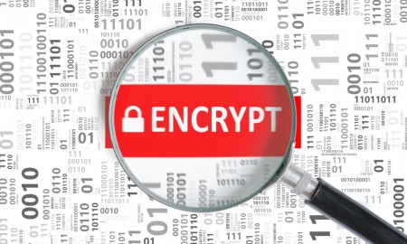 data encryption Bluefin